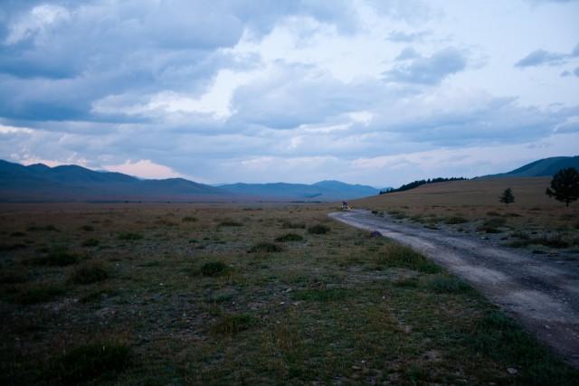 Степи Алтай
