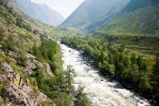 Река Чульча