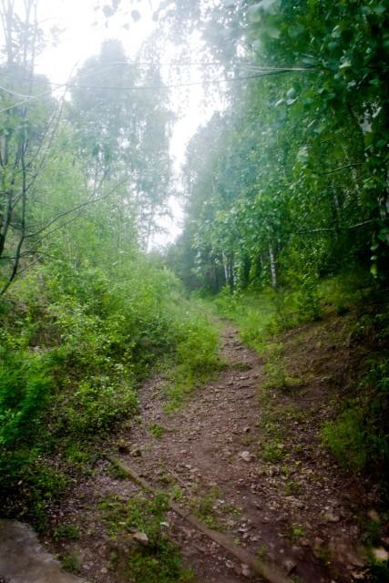 Бабина Гора