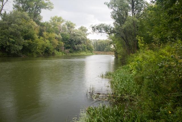 Река Дема