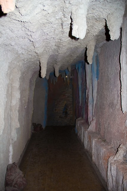 Музей леса Пещера