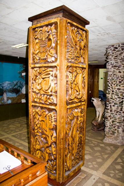 Лесной музей