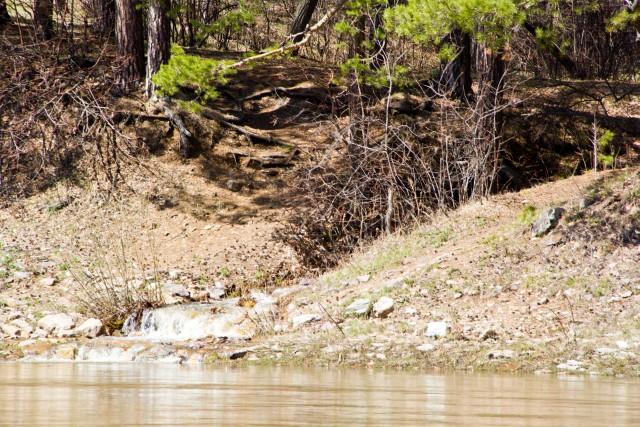 Ручей впадает в реку Белая