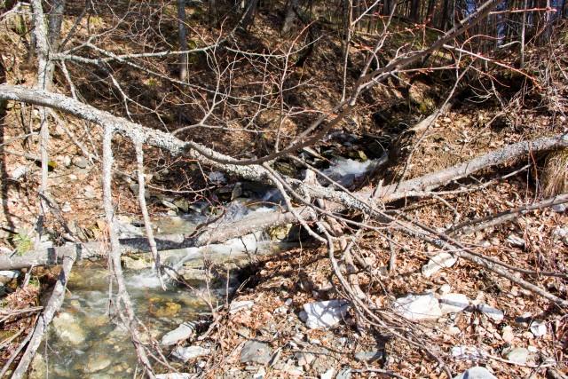 Ручей впадает в Белую