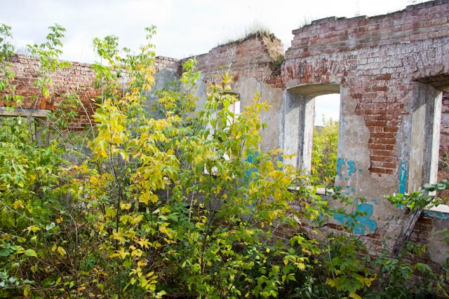 Заброшенный купеческий дом