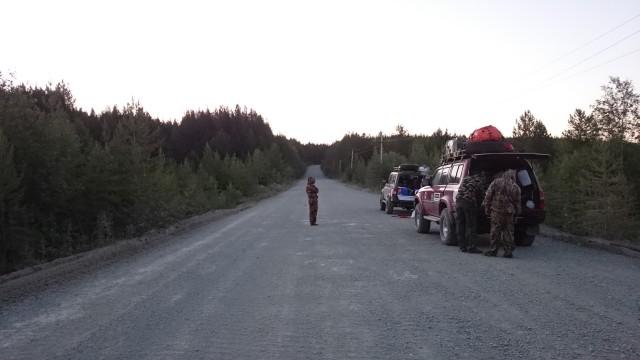 Дорога на Вижай