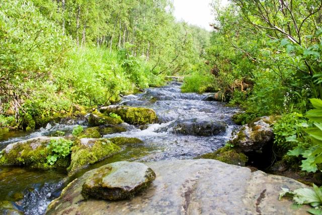 Река Тумпъя