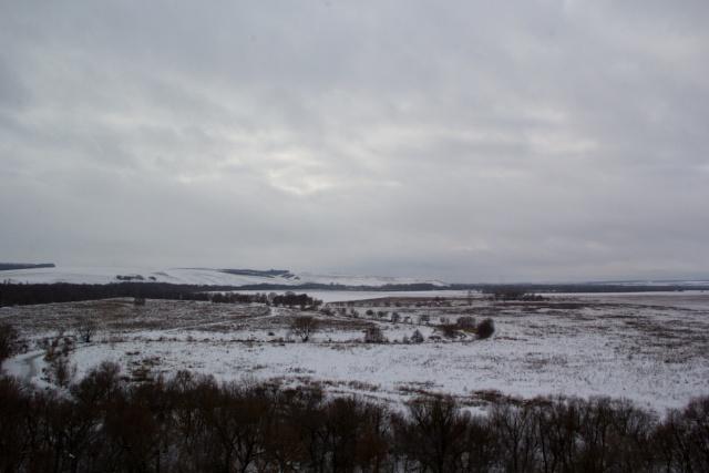 Русло реки Тихая Сосна