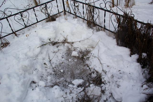 Могила Заброшенный техникум садоводства и огородничества