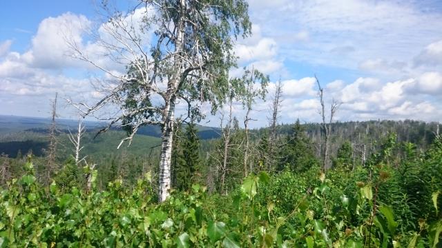 Вид с вершины горы Ак-Тюбе