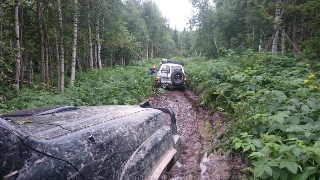 Патрол вытаскивает ТЛК80 из болота