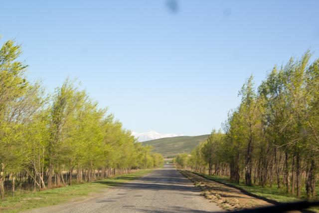 Дорога до Капала